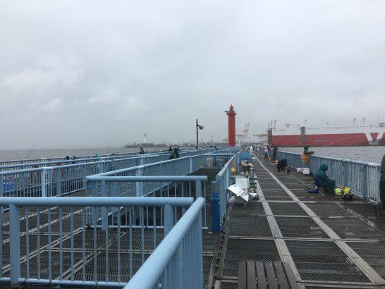 大黒海づり施設 朝釣り