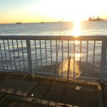 クリスマスイブの釣行で釣果は?!大黒海づり施設へ朝釣りに行ってみました。