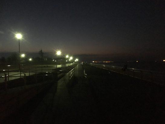 東扇島西公園 朝釣り