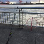 イワイソメでリベンジなるか?!ウキフカセをしに東扇島西公園へ釣りに行ってみました。