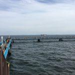 本牧海づり施設 釣り場