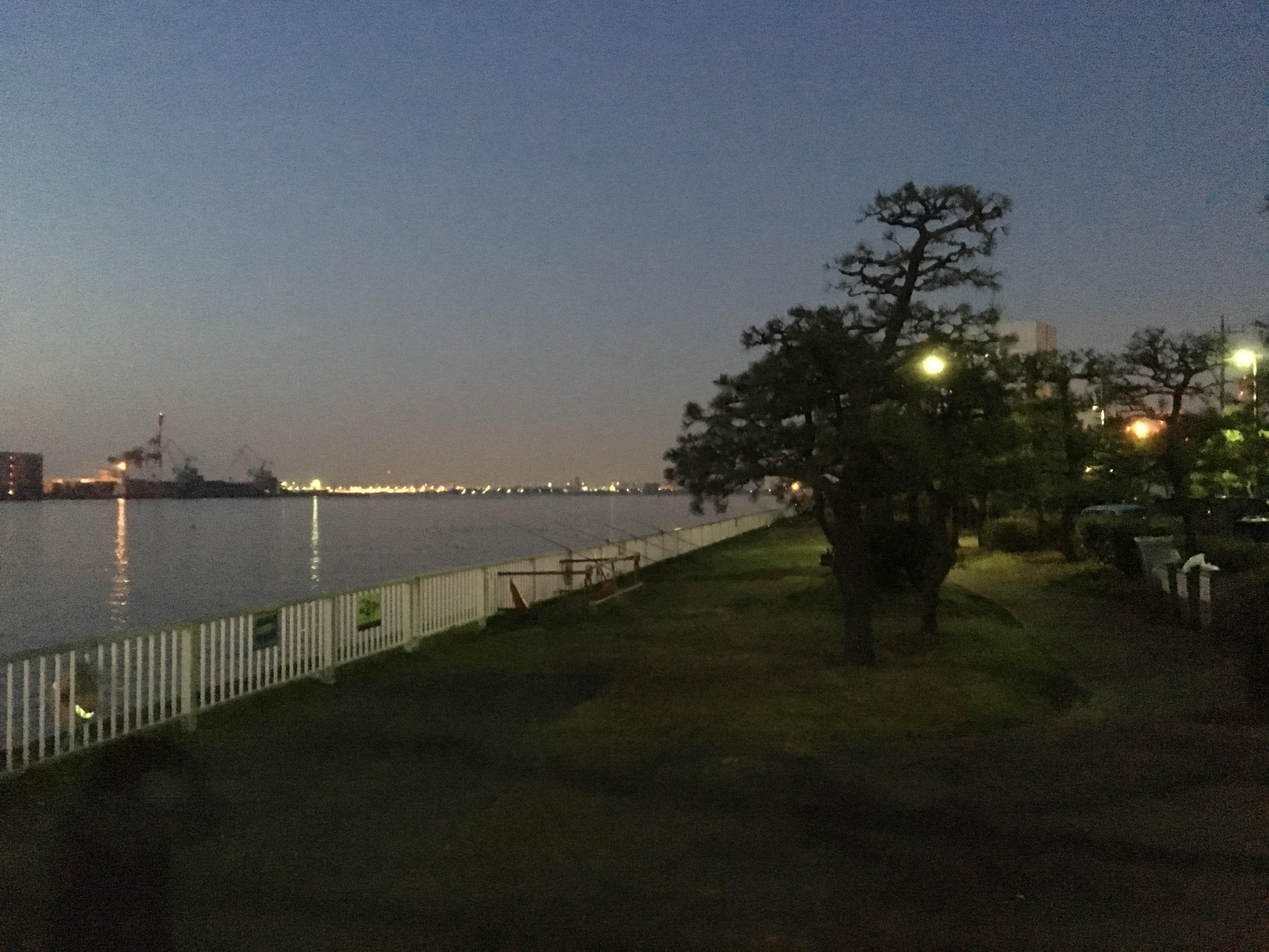 暁ふ頭公園 釣り場