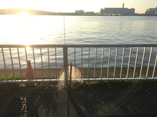 暁ふ頭公園 朝釣り