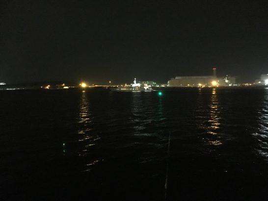 暁ふ頭公園 夜釣り