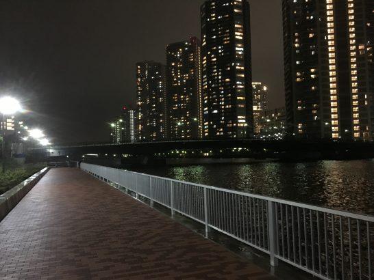 辰巳橋 釣り場