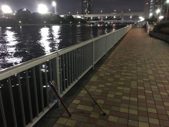 辰巳一丁目 ヘチ釣り