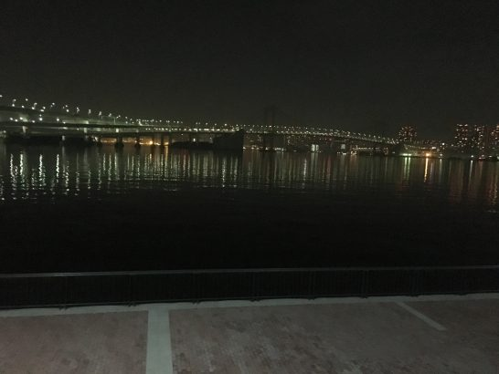 豊洲ぐるり公園 夜釣り
