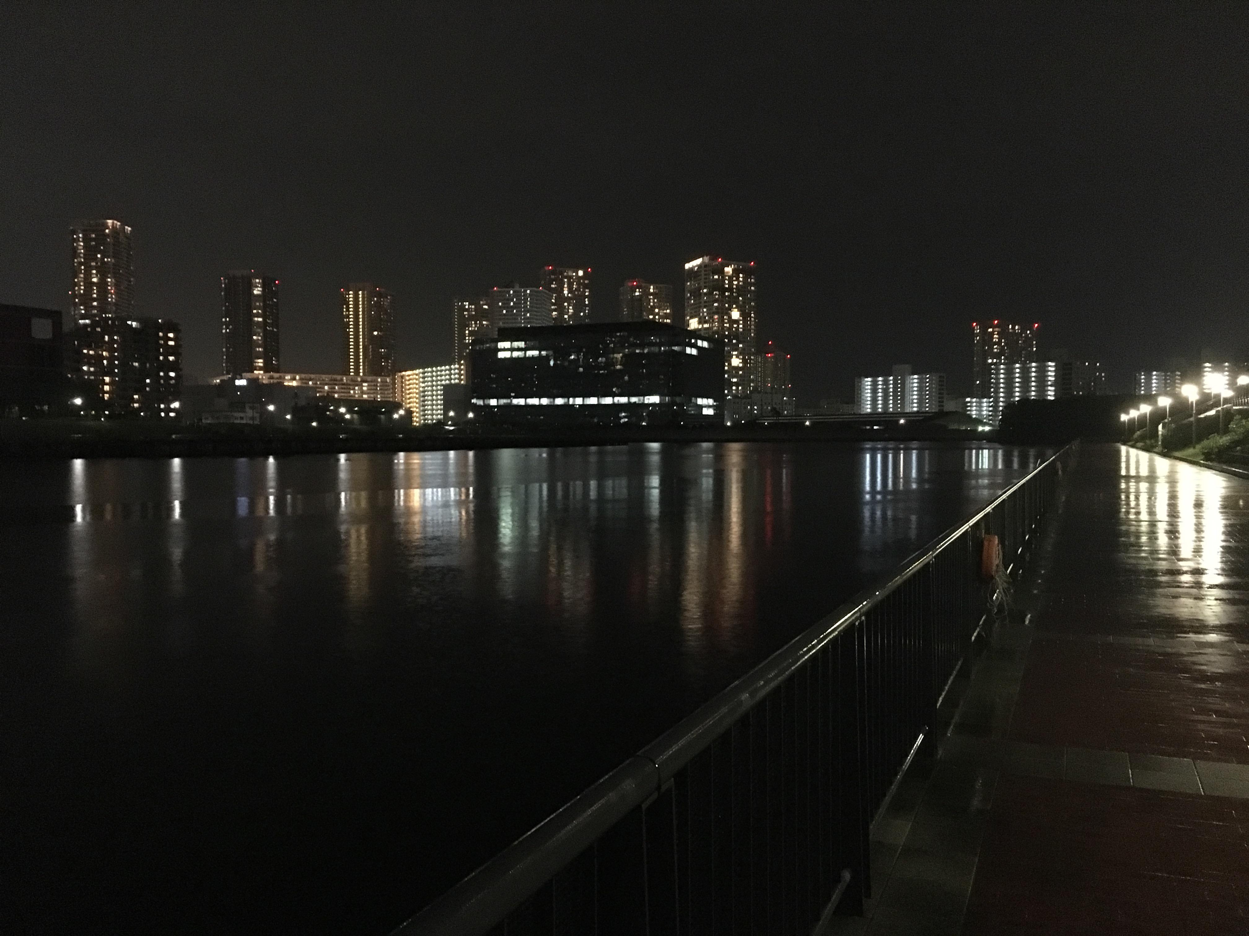豊洲6丁目第二公園 夜釣り