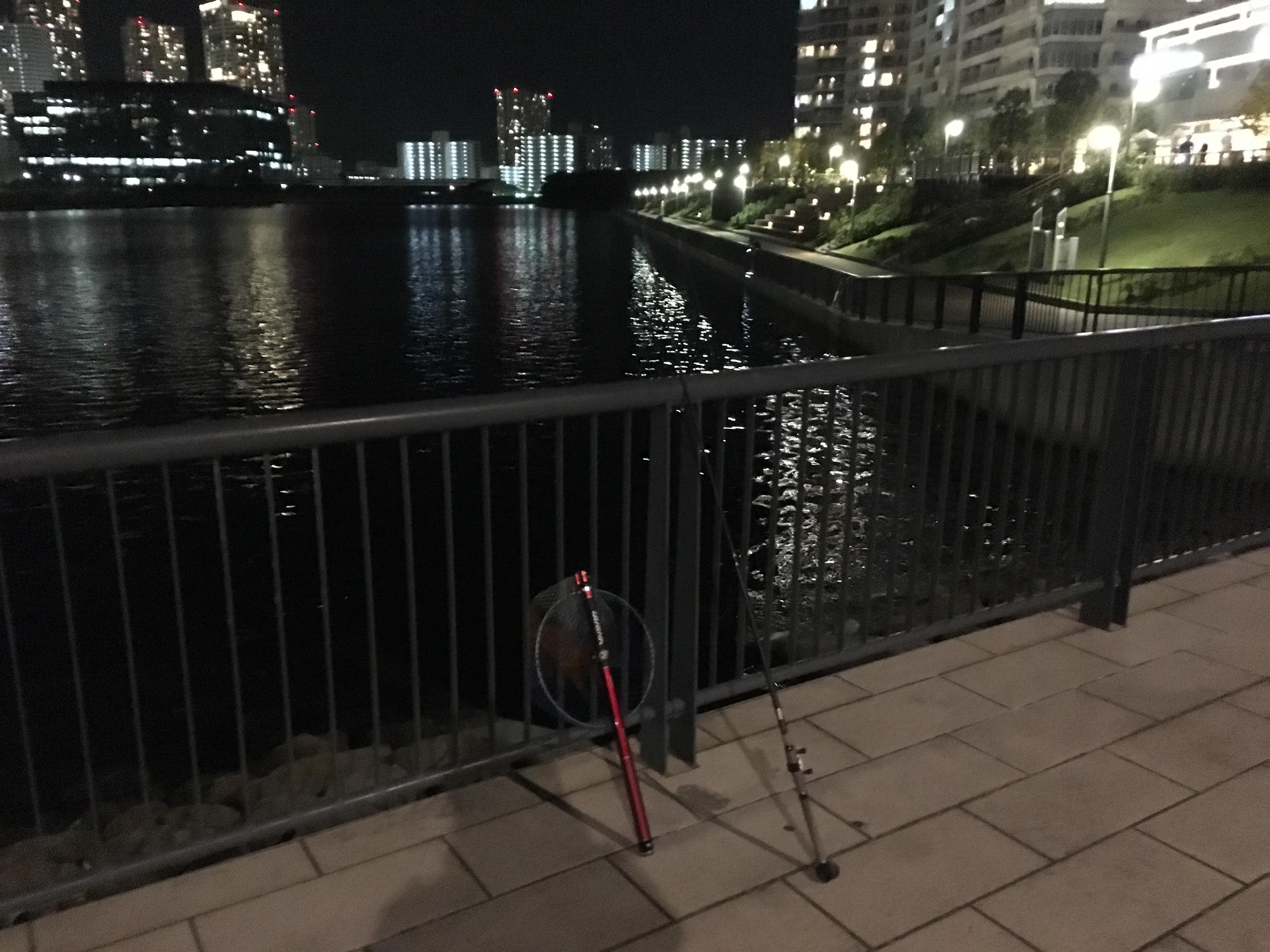 豊洲6丁目第二公園 ヘチ釣り