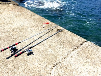 泳がせ釣り