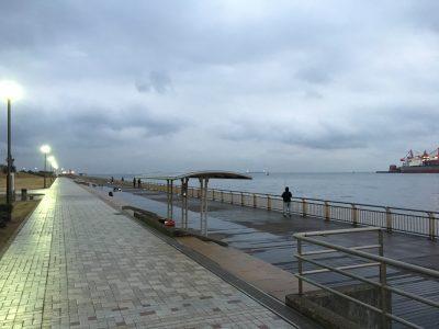 東扇島西公園 釣り場