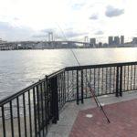 豊洲ぐるり公園 釣り場