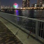 有明北緑道公園 ヘチ釣り