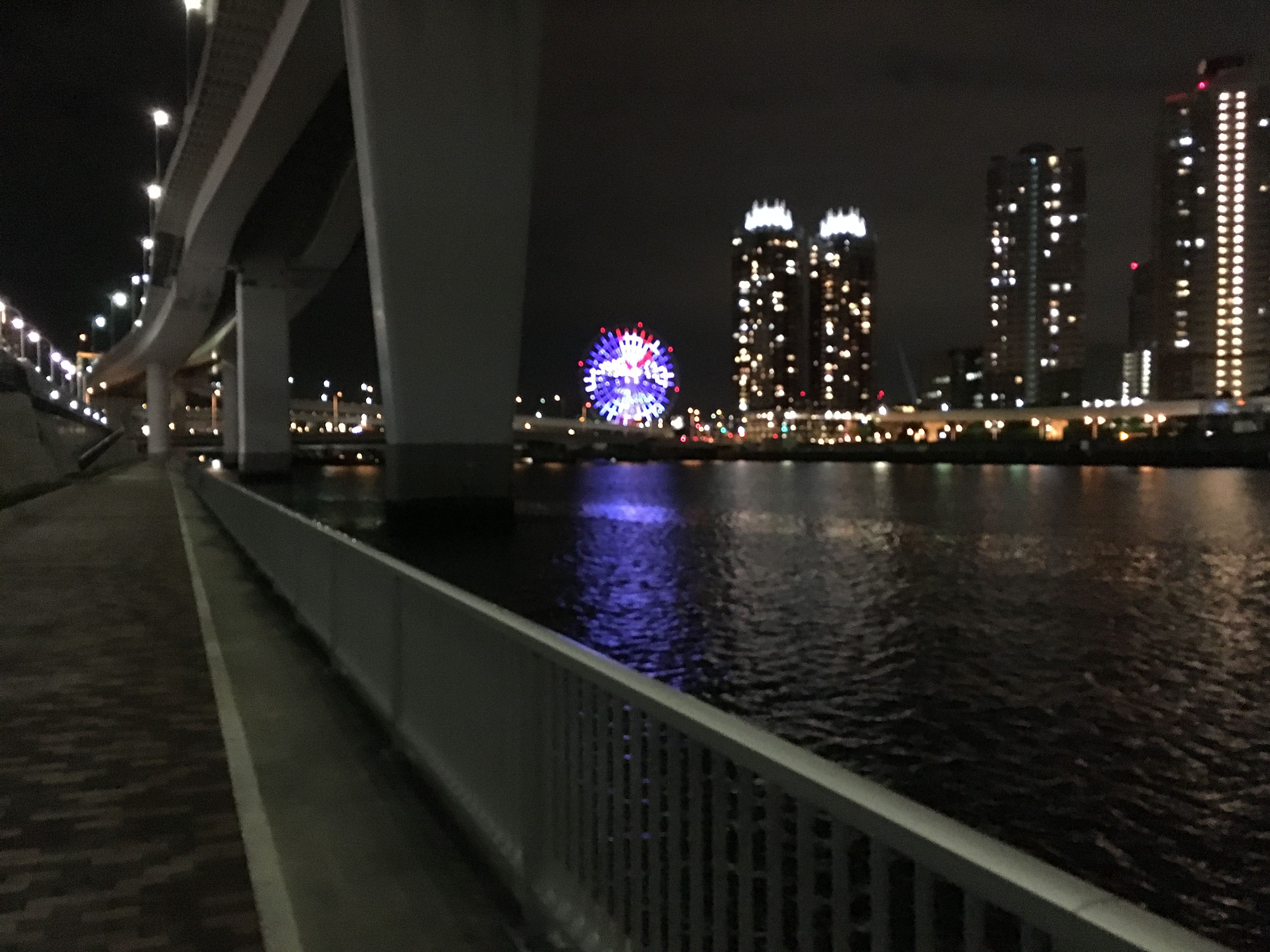 有明北緑道公園 夜釣り