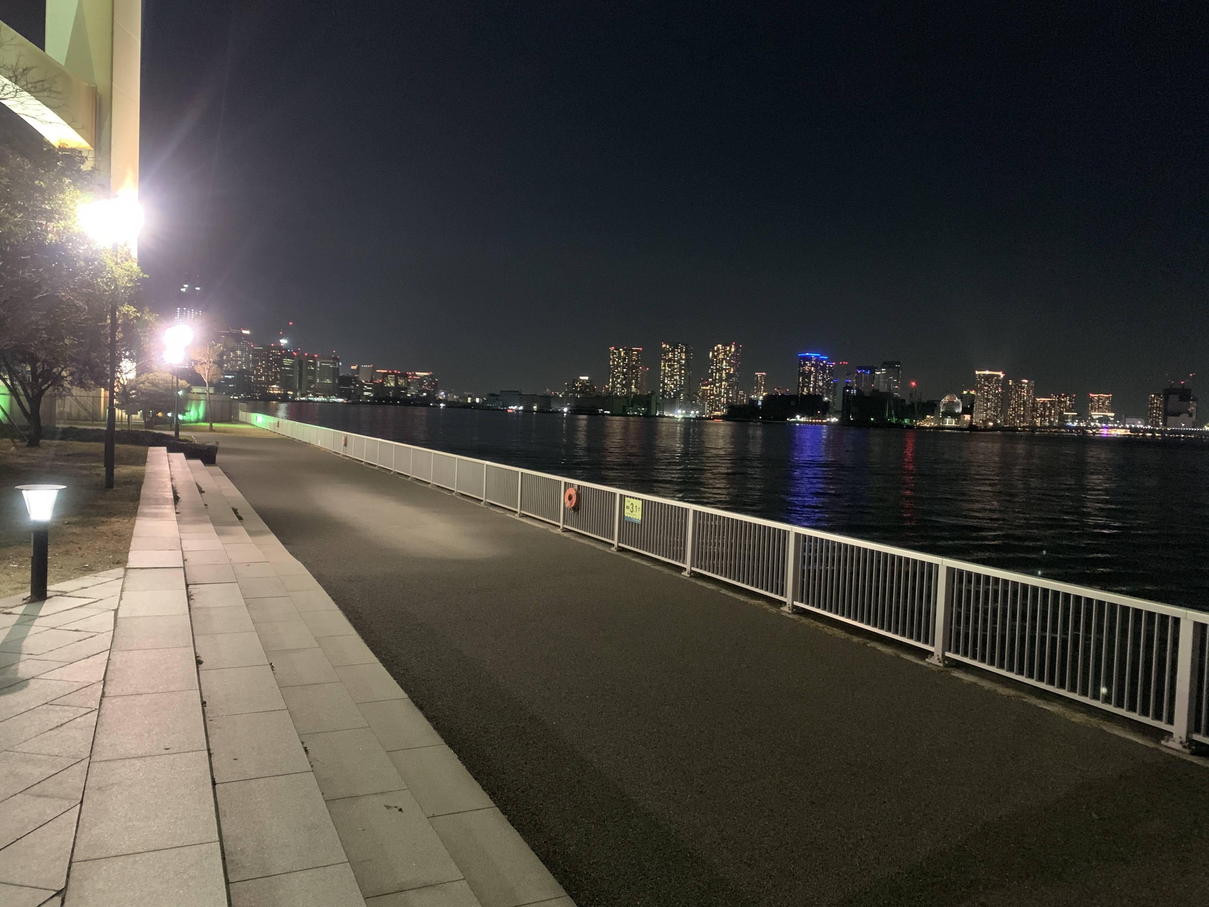 芝浦南ふ頭公園 夜釣り