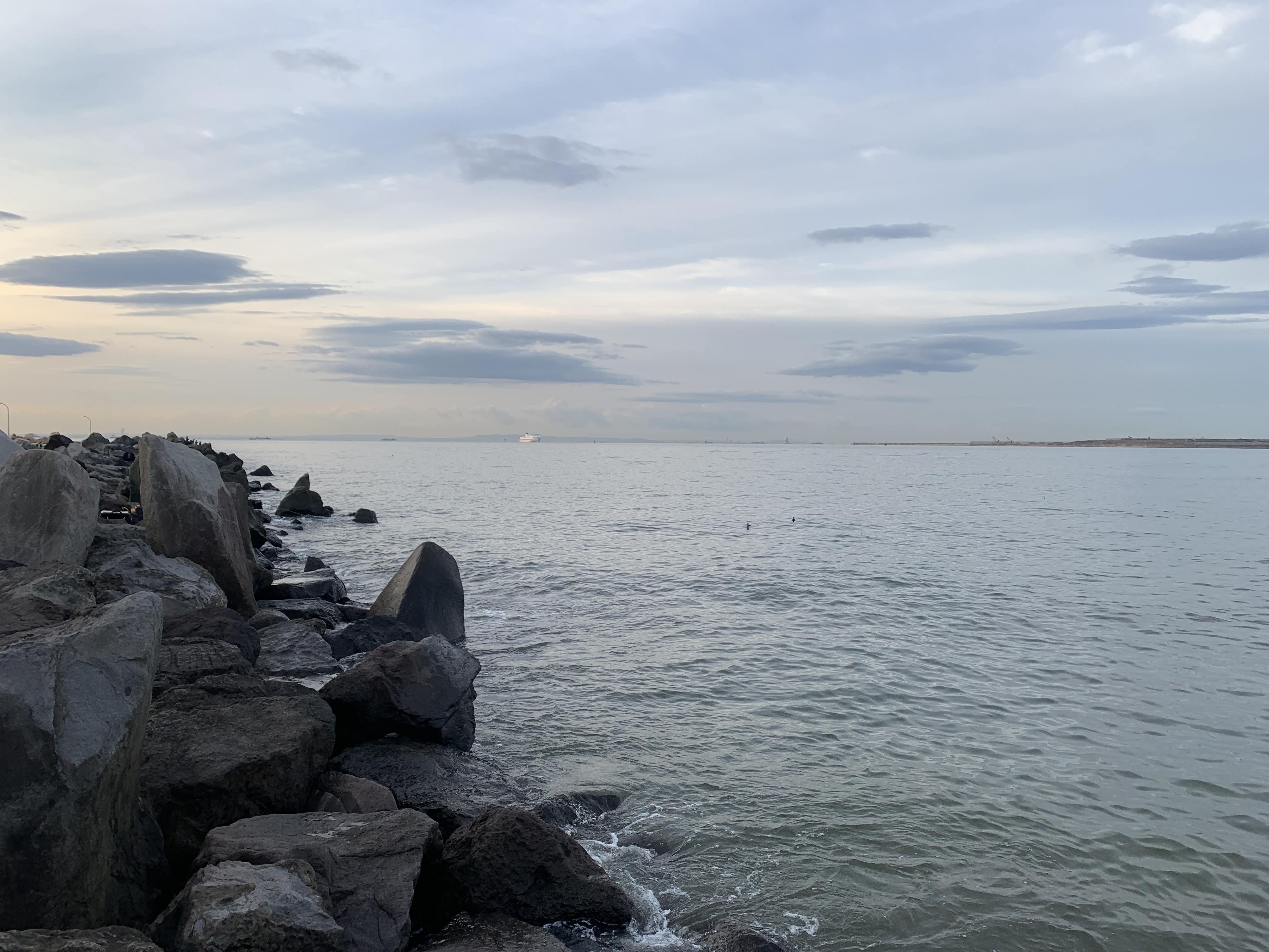 若洲海浜公園 ウキフカセ釣り