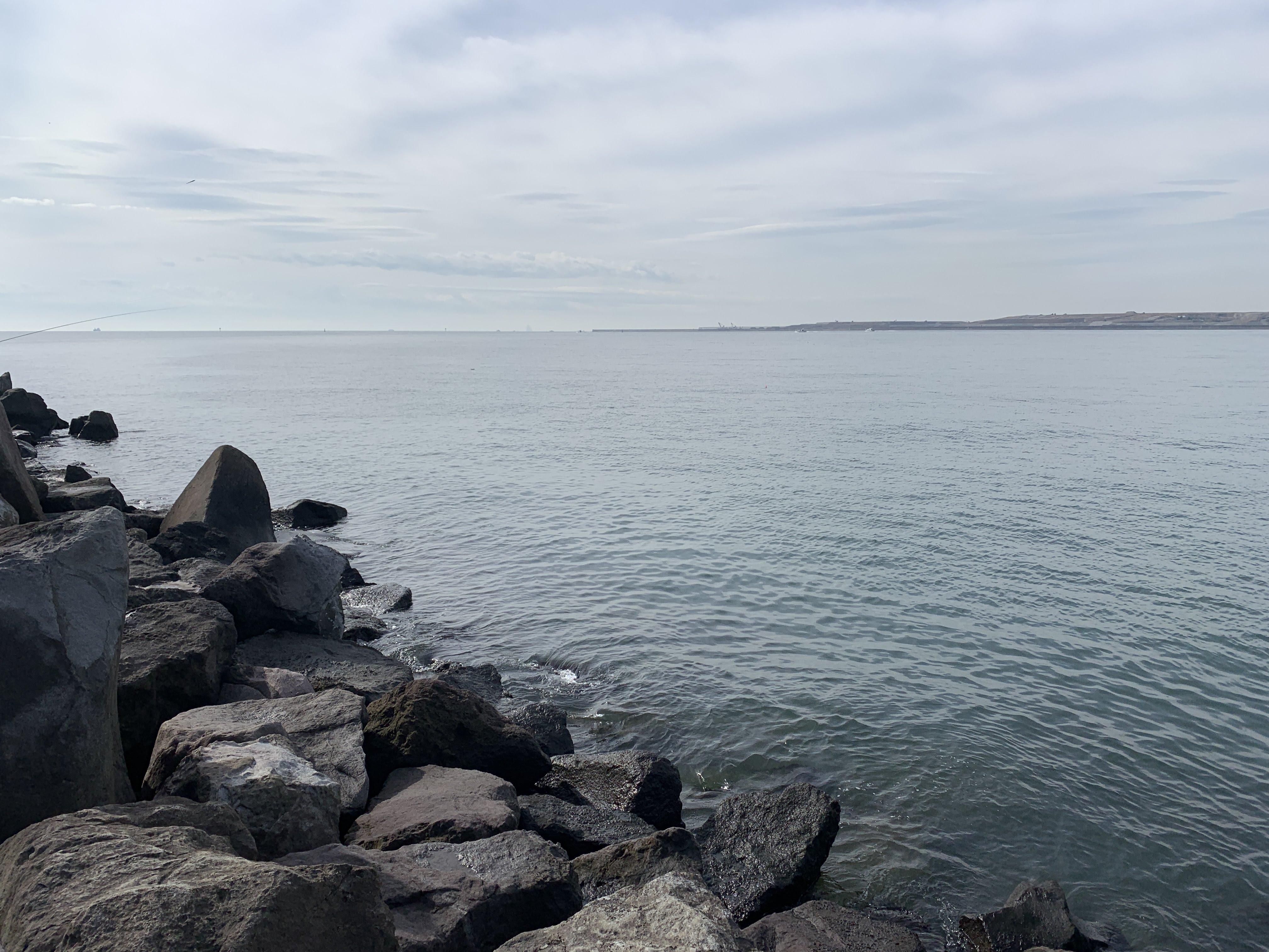 若洲海浜公園 朝釣り