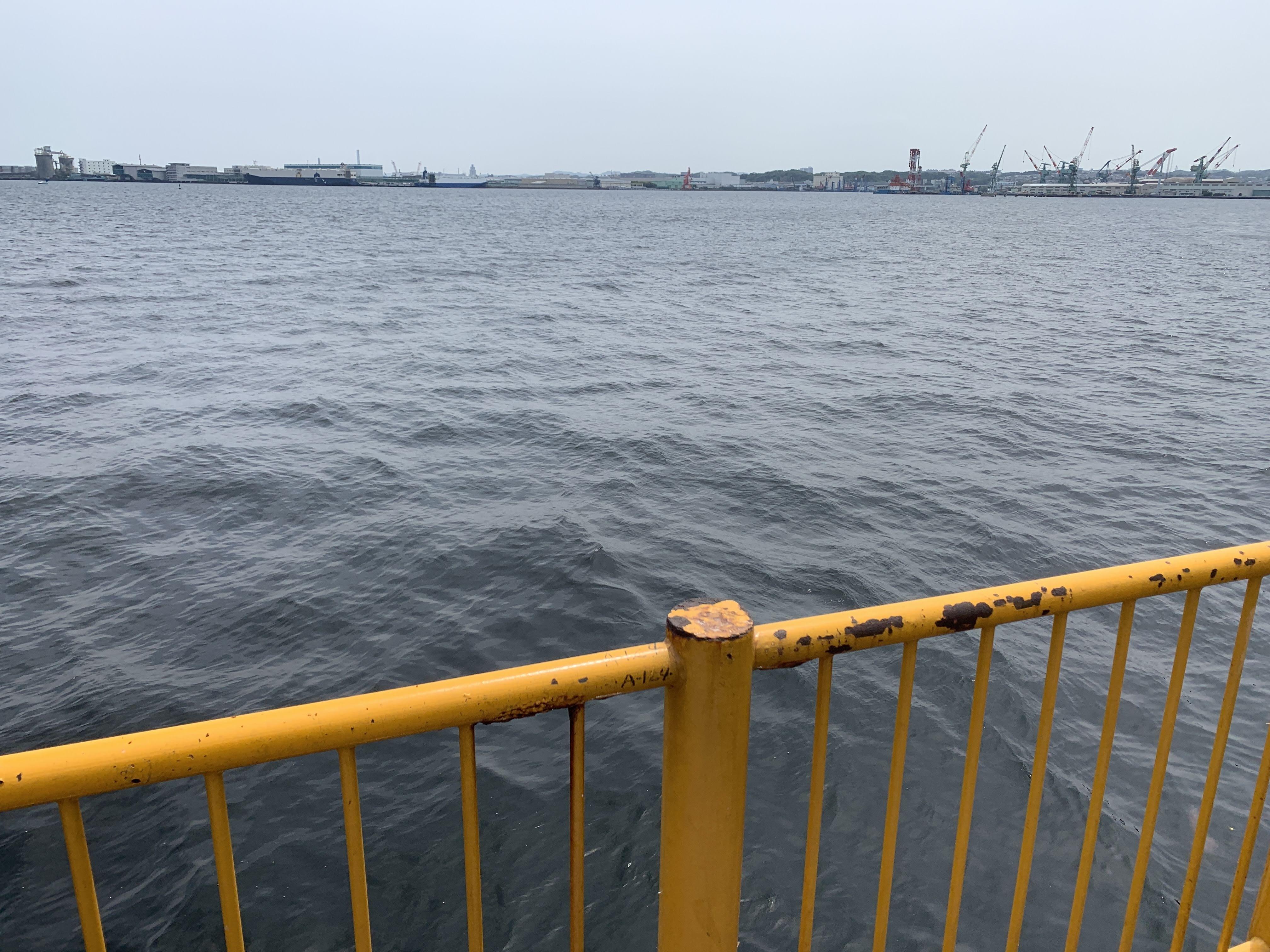 磯子海づり施設 朝釣り