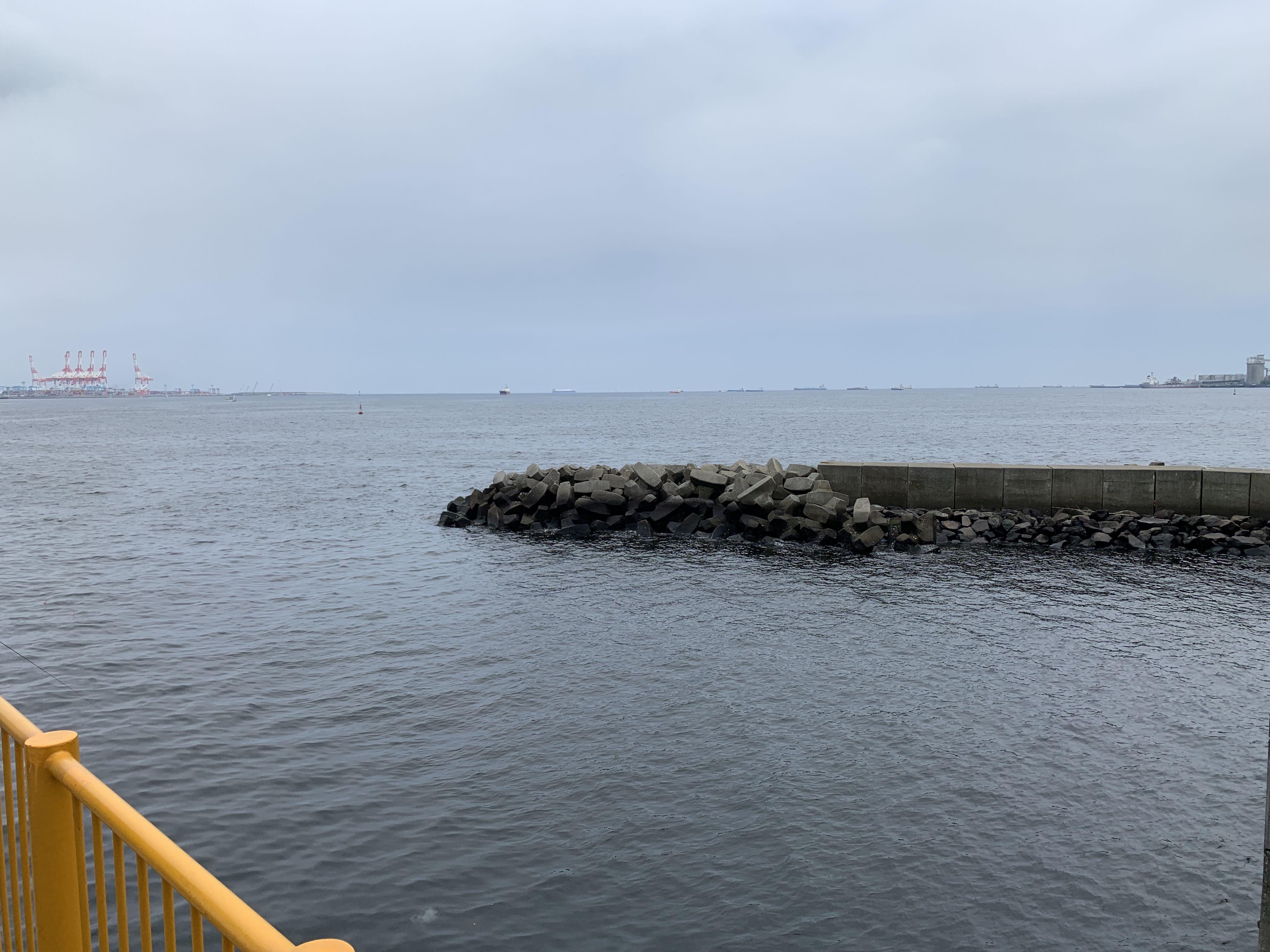 磯子海づり施設 釣り