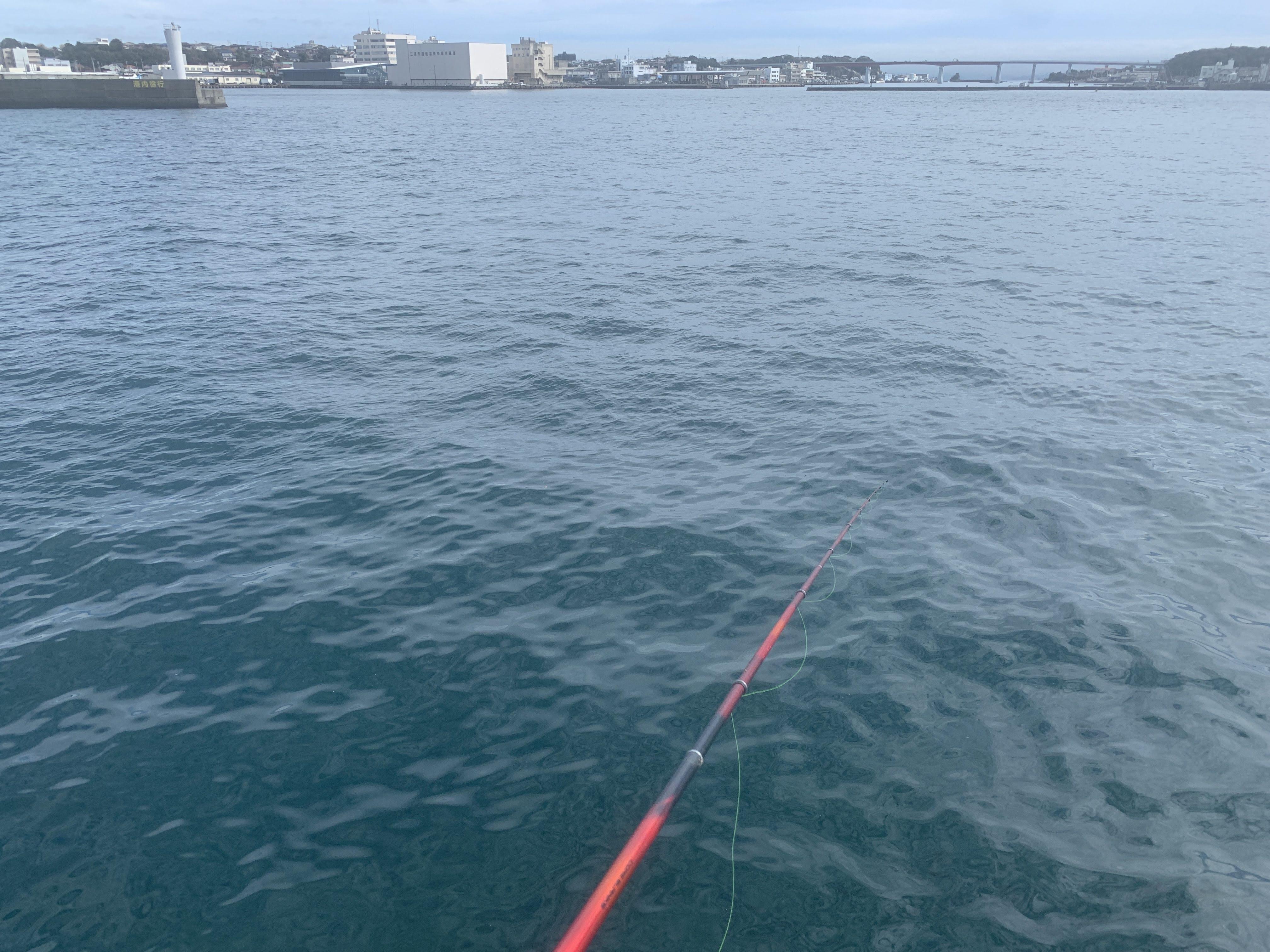 居島新堤防 フカセ釣り