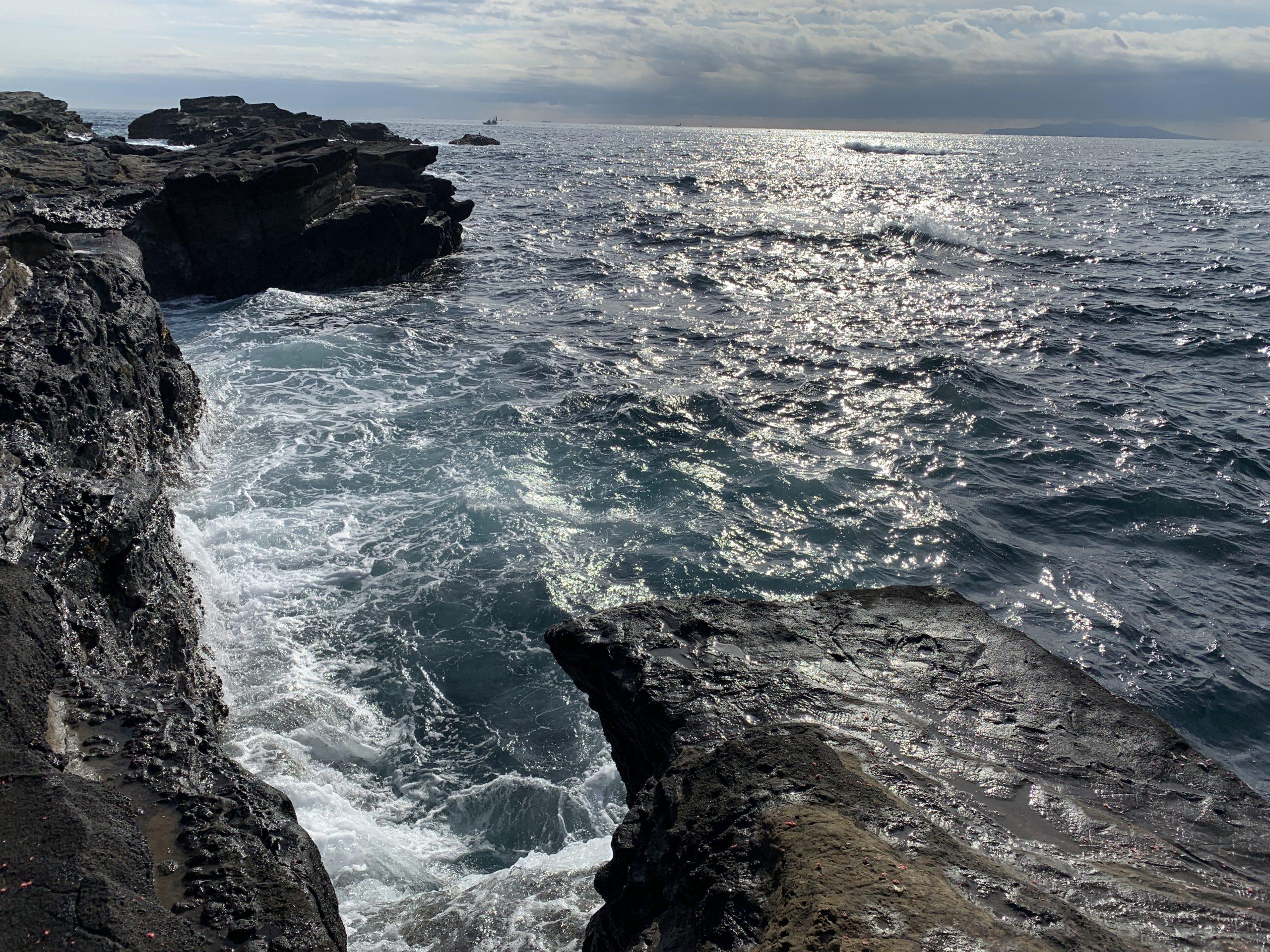 城ヶ島 ウキフカセ釣り