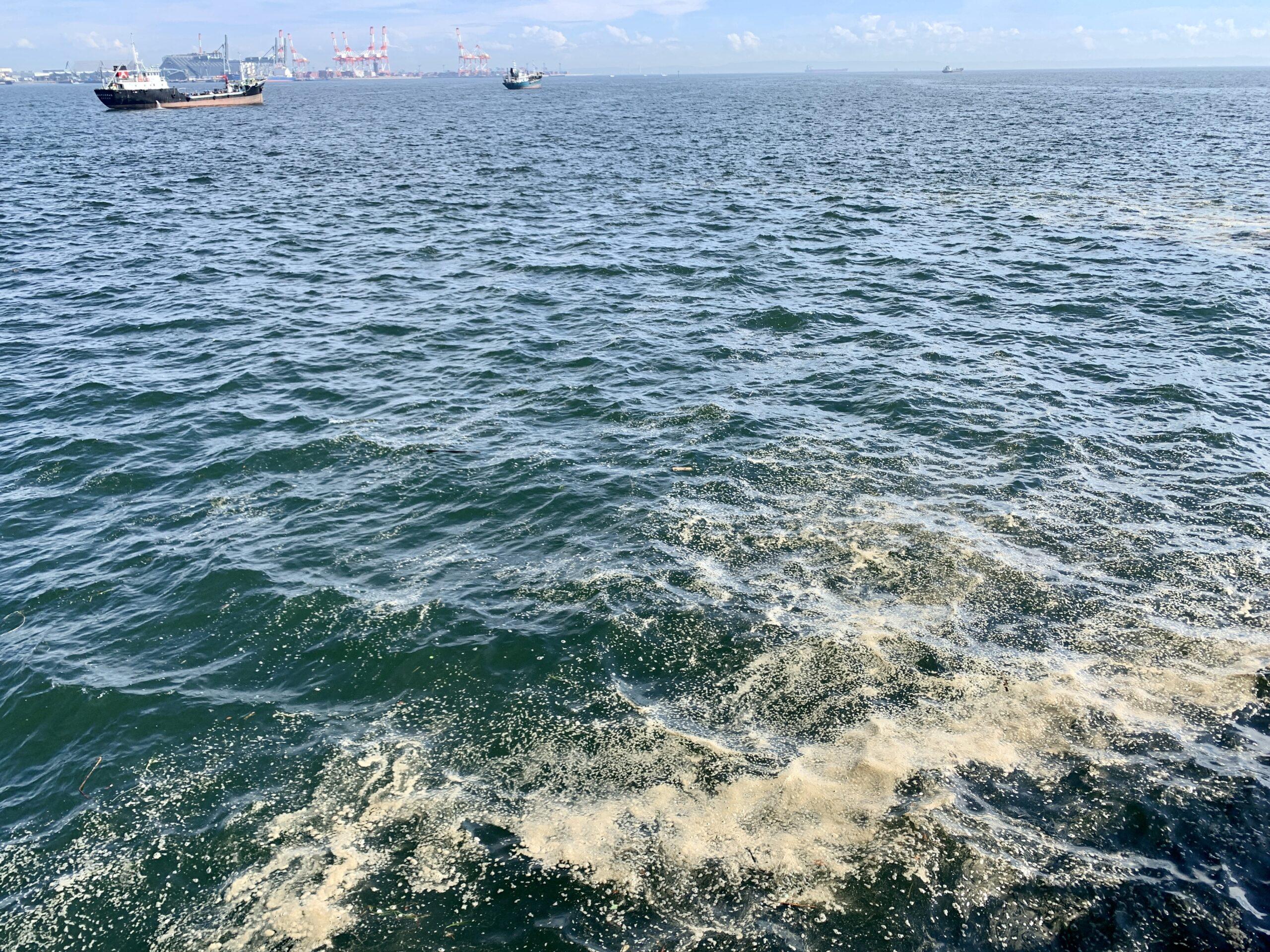 磯子海づり施設 海面
